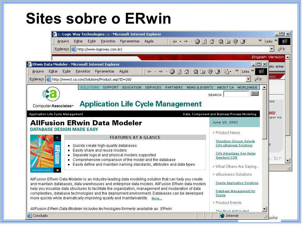 Sites sobre o ERwin