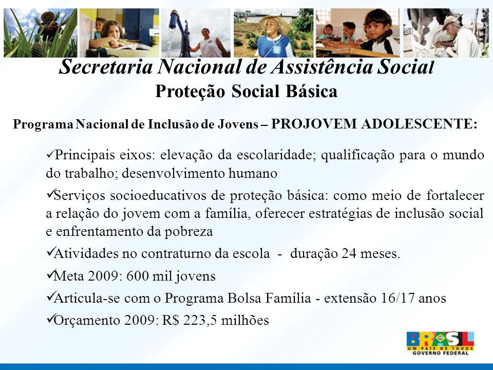 Secretaria Nacional de Assistência Social Proteção Social Básica