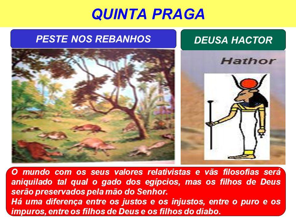 QUINTA PRAGA PESTE NOS REBANHOS DEUSA HACTOR
