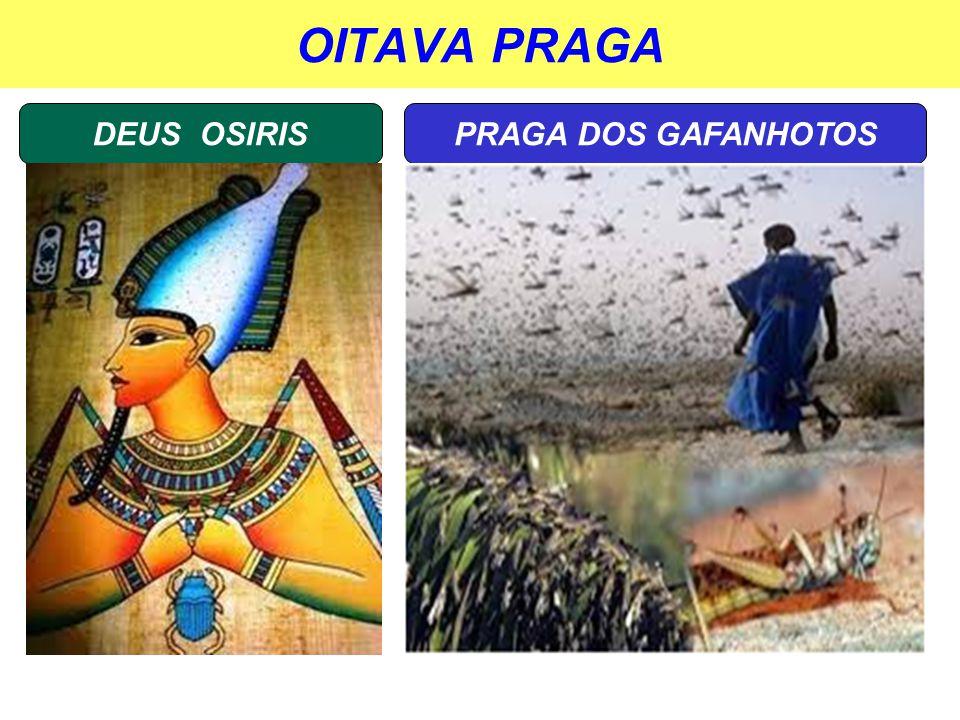 OITAVA PRAGA DEUS OSIRIS PRAGA DOS GAFANHOTOS