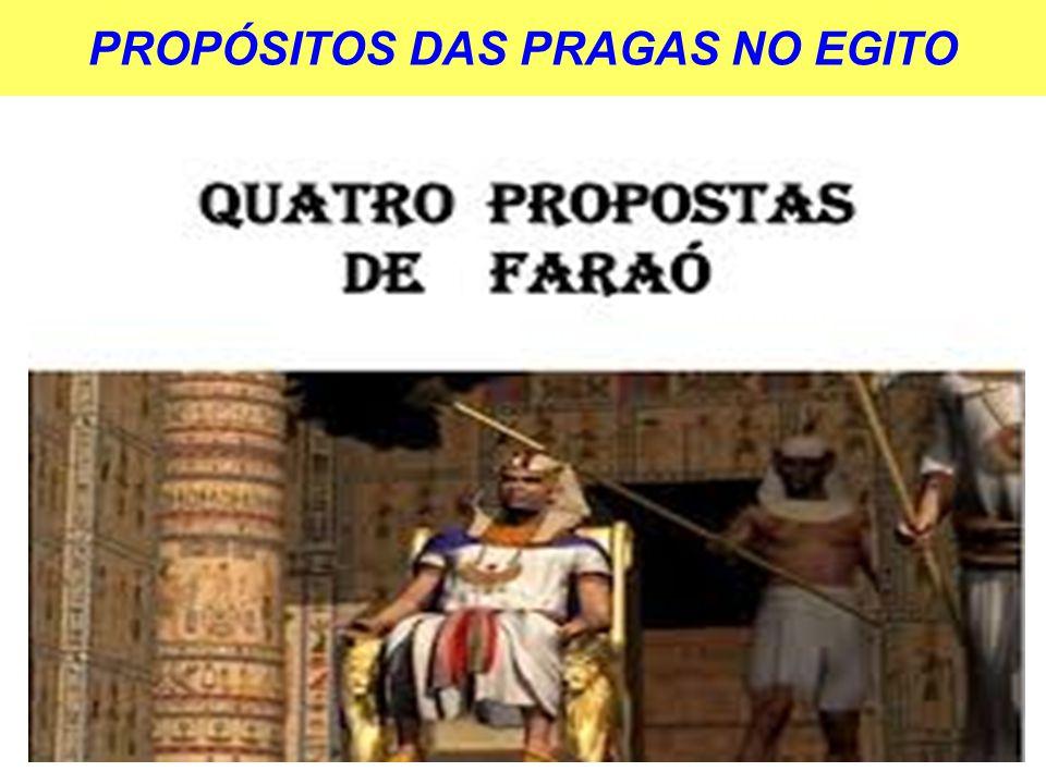 PROPÓSITOS DAS PRAGAS NO EGITO