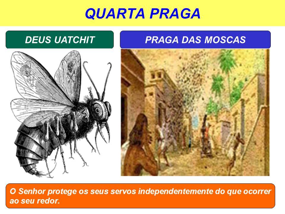 QUARTA PRAGA DEUS UATCHIT PRAGA DAS MOSCAS
