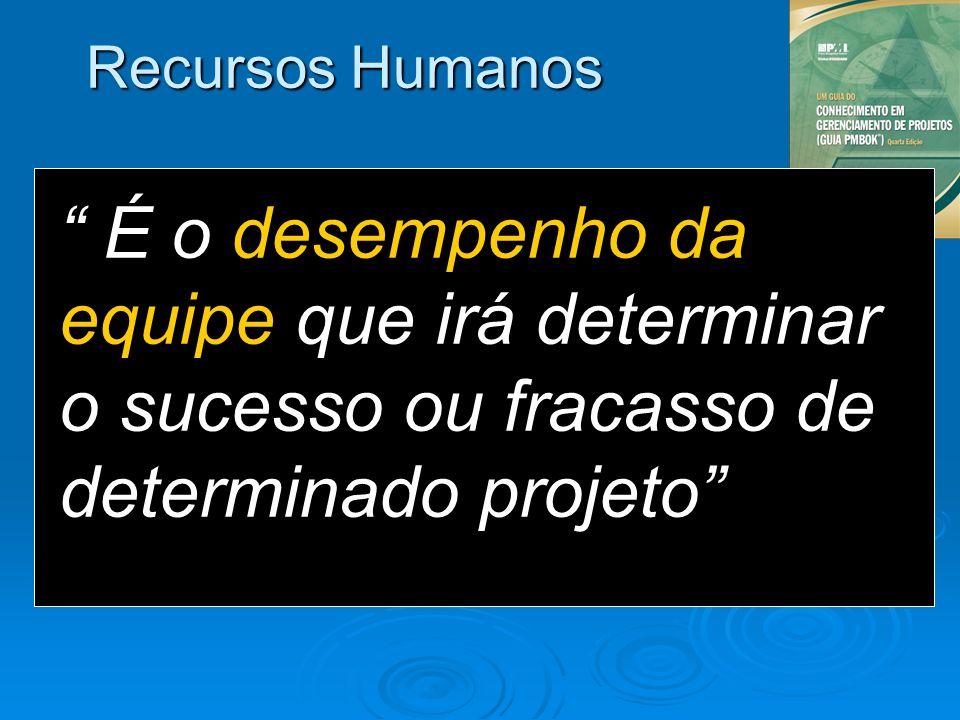 Recursos Humanos É o desempenho da equipe que irá determinar o sucesso ou fracasso de determinado projeto