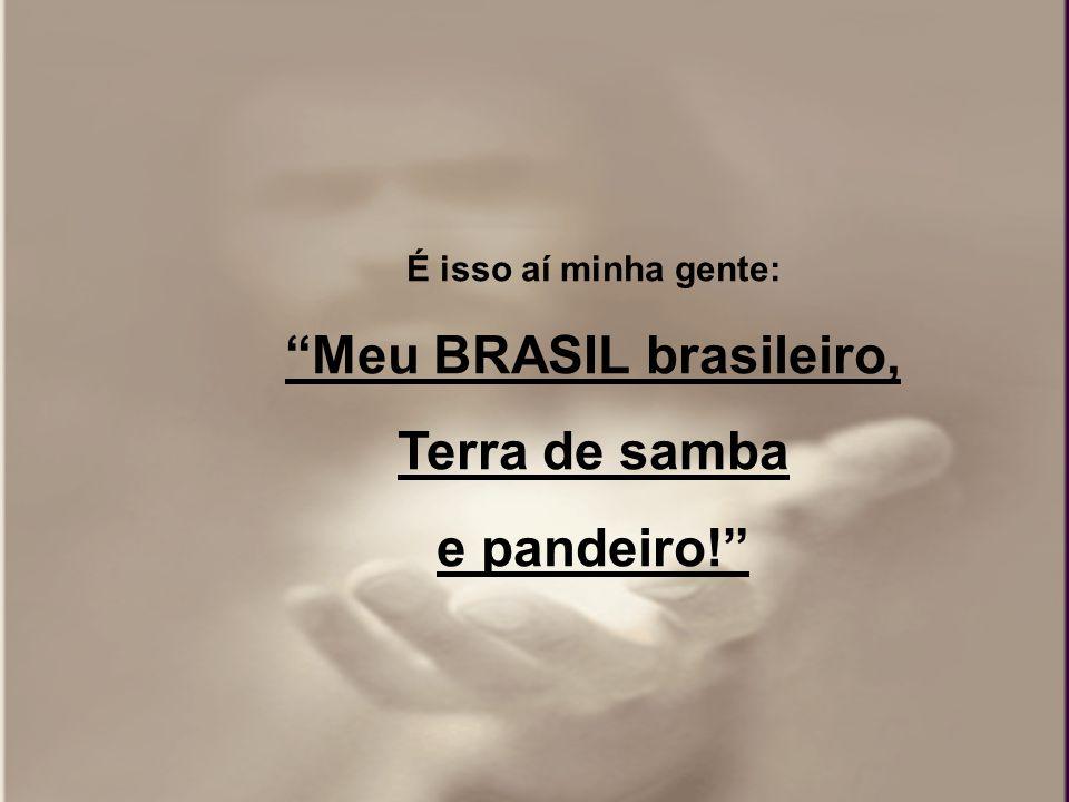 Meu BRASIL brasileiro,