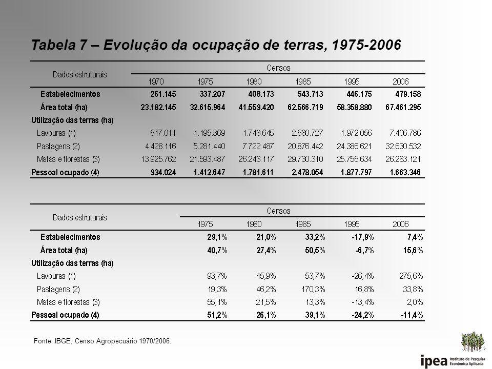 Tabela 7 – Evolução da ocupação de terras, 1975-2006