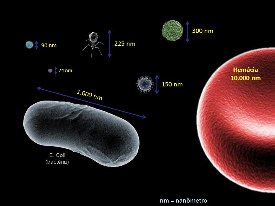 300 nm 225 nm Hemácia 10.000 nm 150 nm 1.000 nm nm = nanômetro 90 nm