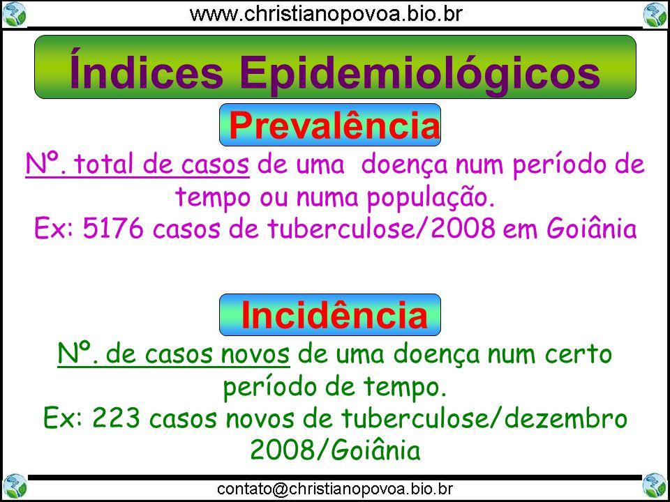 Índices Epidemiológicos