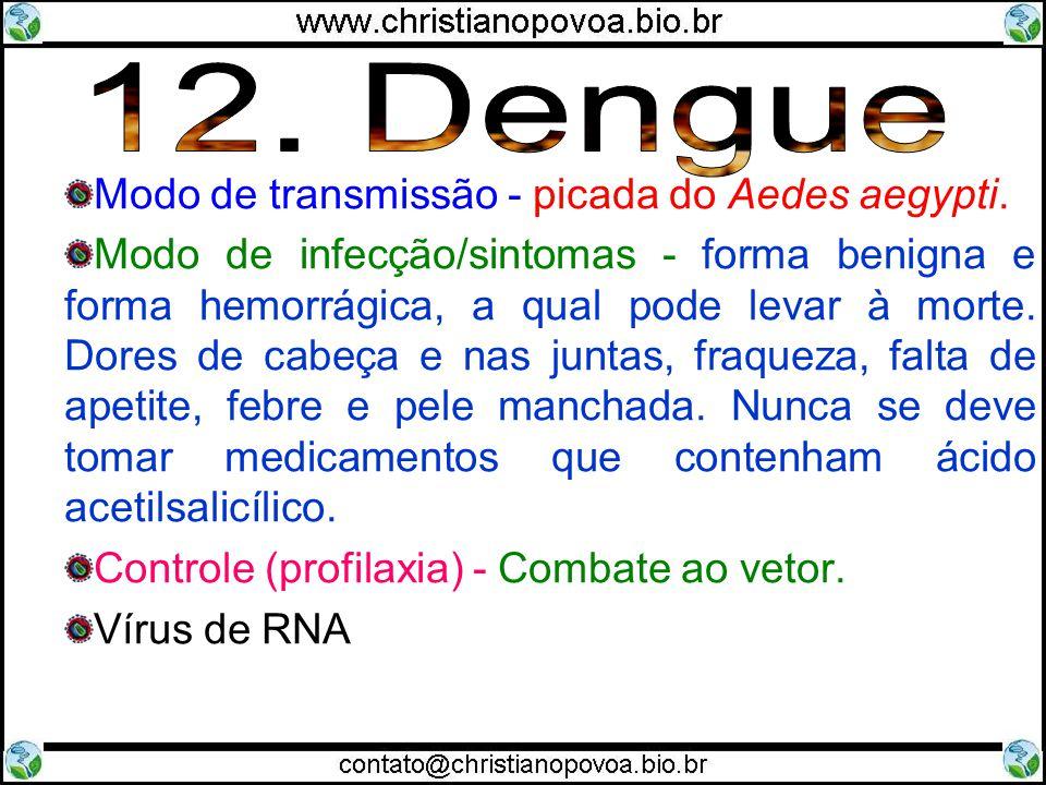 12. Dengue Modo de transmissão - picada do Aedes aegypti.