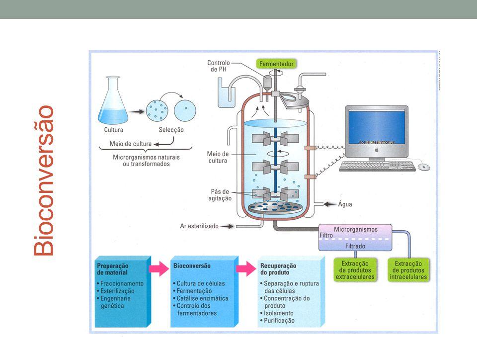 Bioconversão