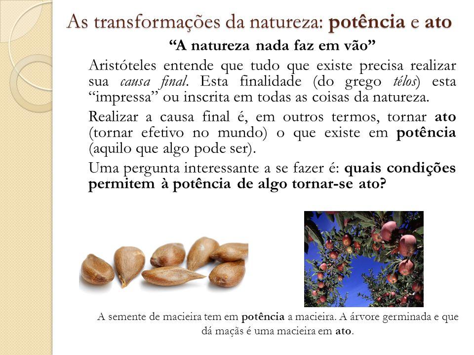 As transformações da natureza: potência e ato