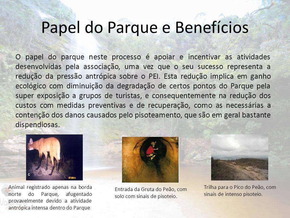 Papel do Parque e Benefícios