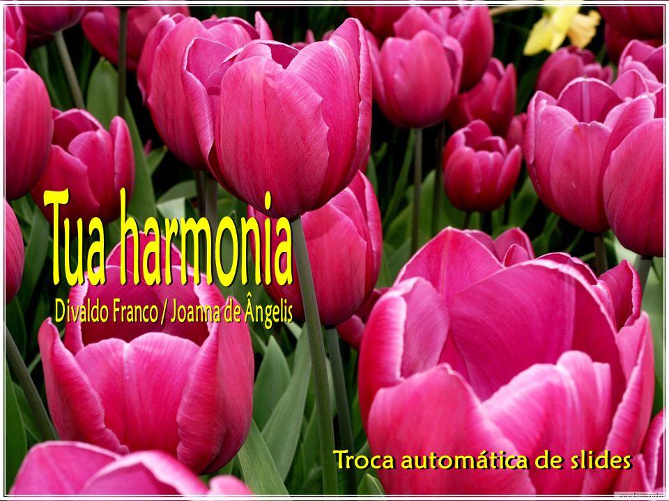 Divaldo Franco / Joanna de Ângelis Troca automática de slides