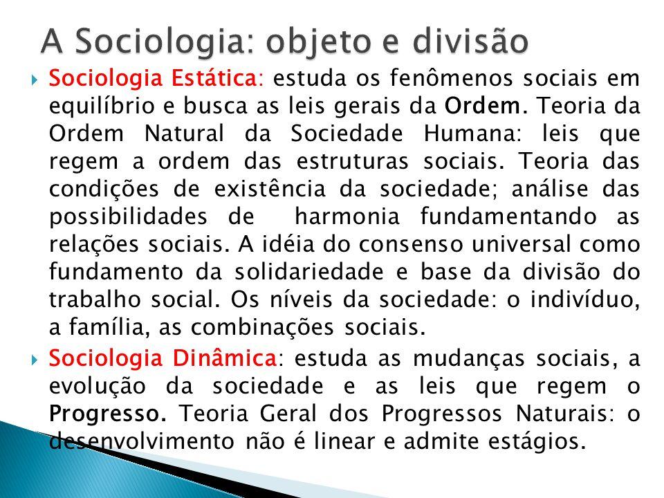 A Sociologia: objeto e divisão