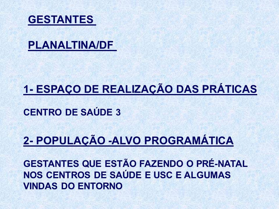 1- ESPAÇO DE REALIZAÇÃO DAS PRÁTICAS