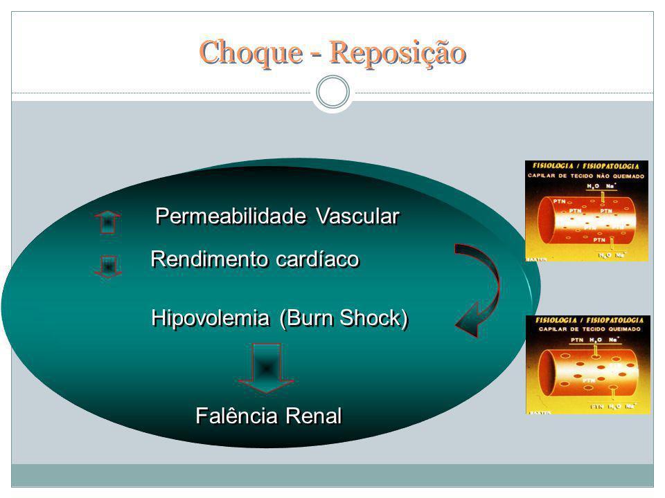 Permeabilidade Vascular