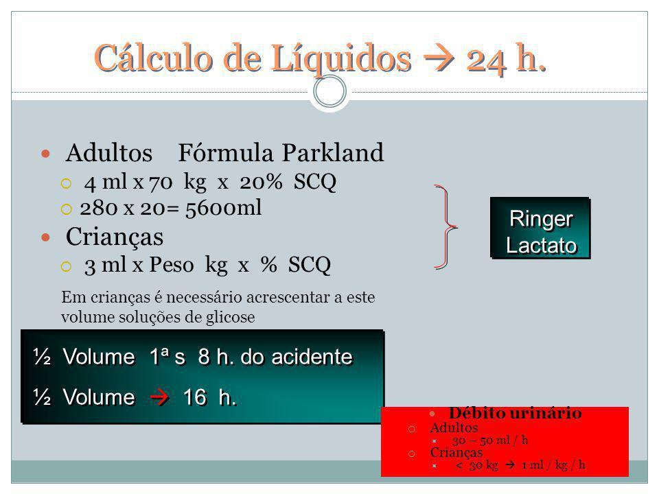 Cálculo de Líquidos  24 h. Adultos Fórmula Parkland Crianças