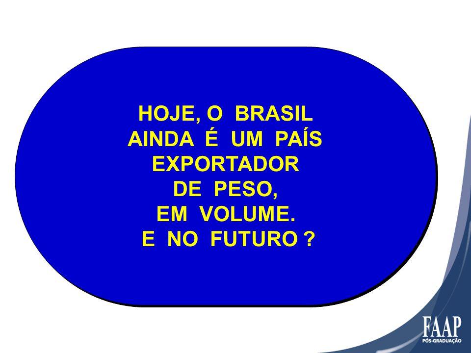 HOJE, O BRASIL AINDA É UM PAÍS EXPORTADOR DE PESO, EM VOLUME. E NO FUTURO