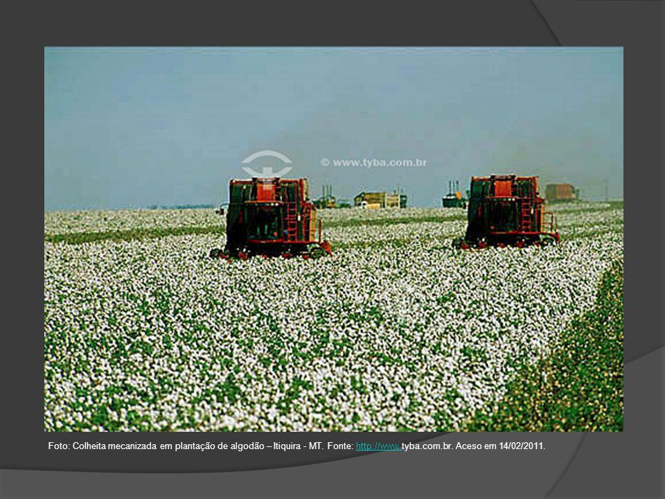 Foto: Colheita mecanizada em plantação de algodão – Itiquira - MT
