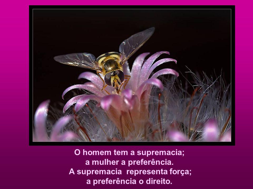 O homem tem a supremacia; a mulher a preferência.