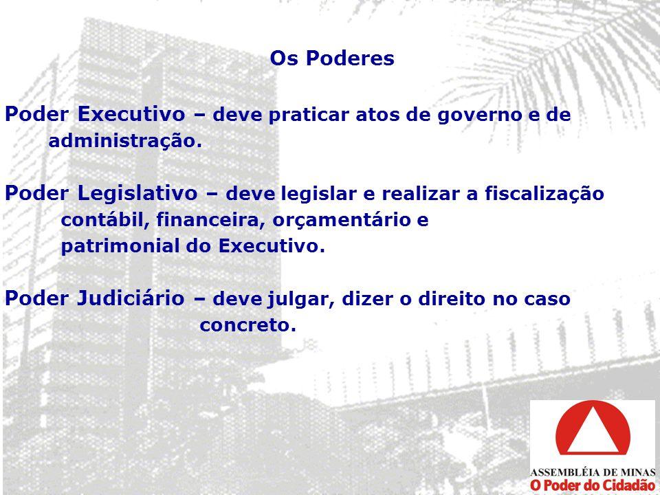 Poder Executivo – deve praticar atos de governo e de