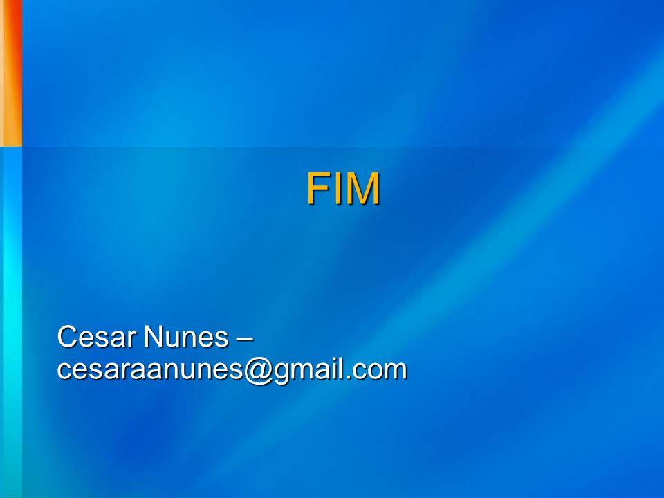 Cesar Nunes – cesaraanunes@gmail.com