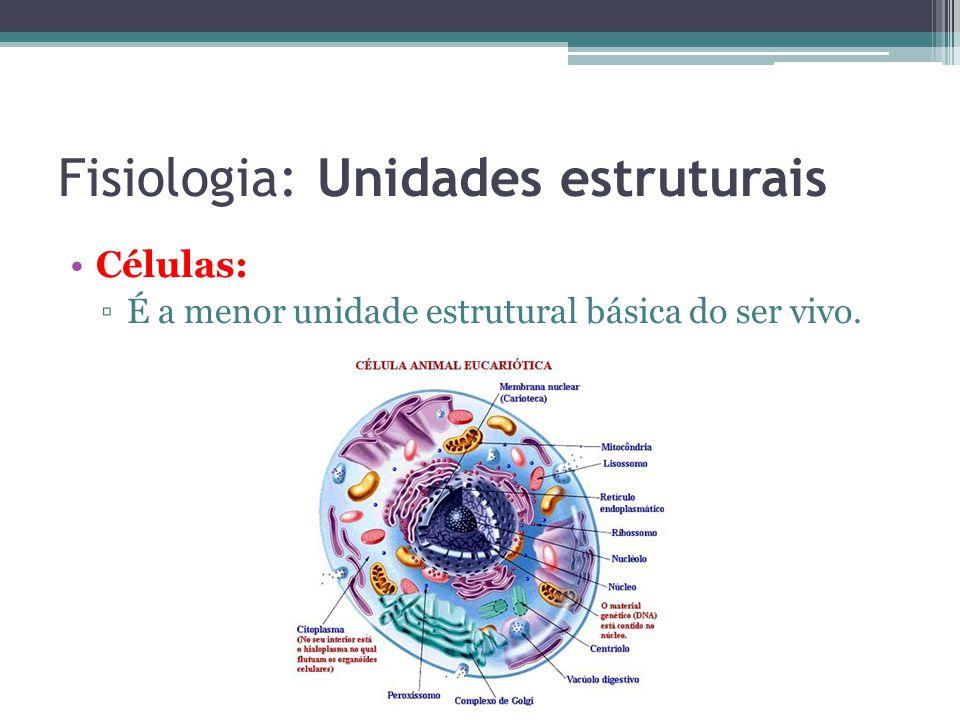 Fisiologia: Unidades estruturais