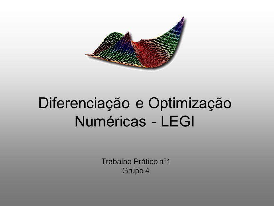 Diferenciação e Optimização Numéricas - LEGI