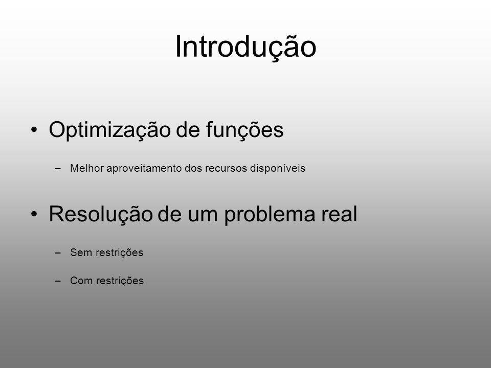Introdução Optimização de funções Resolução de um problema real