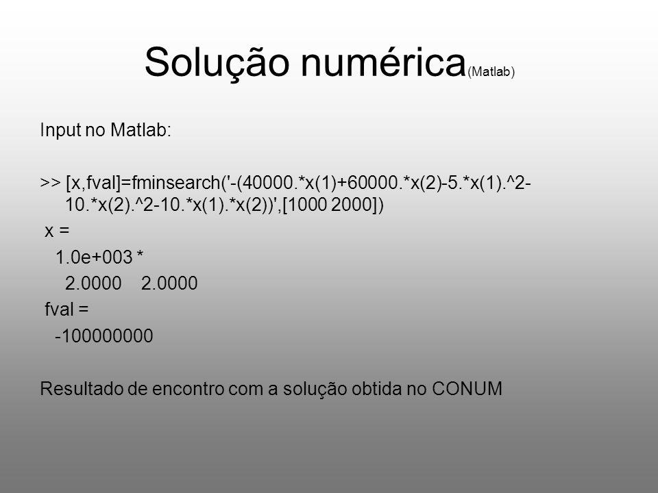 Solução numérica(Matlab)