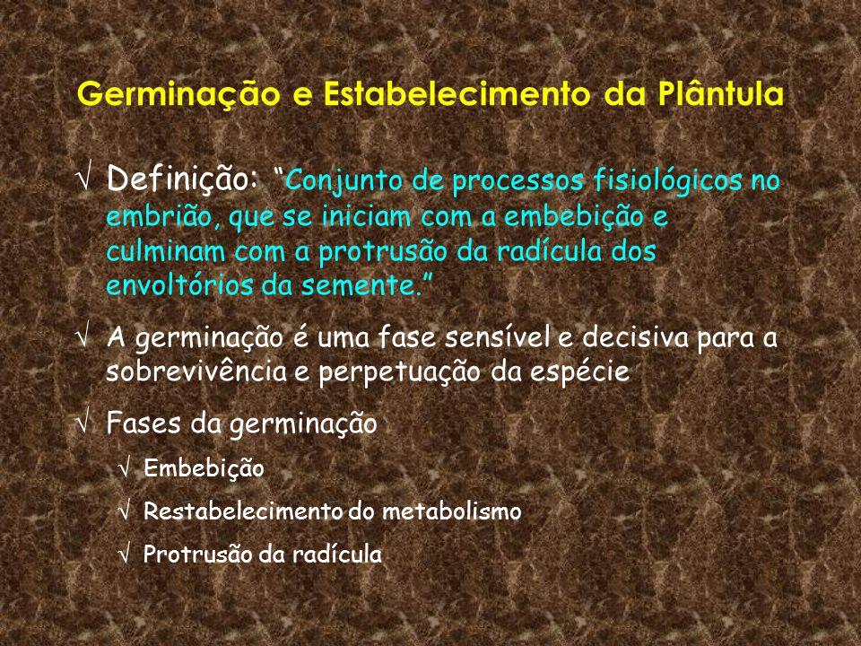 Germinação e Estabelecimento da Plântula