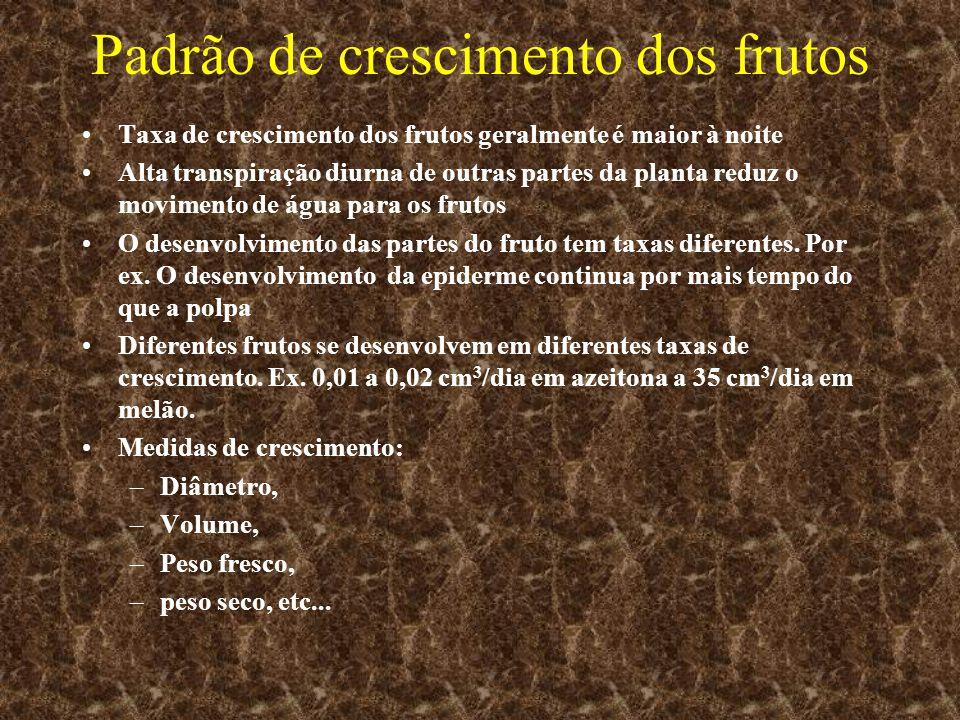 Padrão de crescimento dos frutos