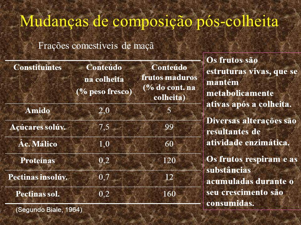 Mudanças de composição pós-colheita