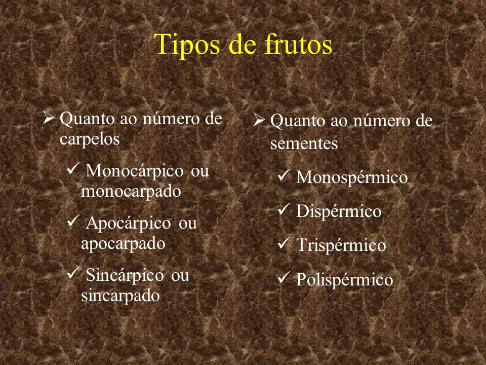 Tipos de frutos Quanto ao número de carpelos