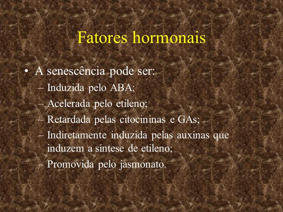Fatores hormonais A senescência pode ser: Induzida pelo ABA;