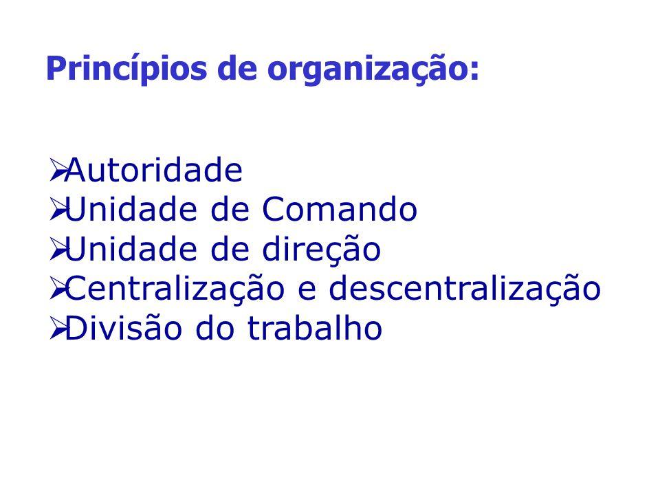 Princípios de organização: