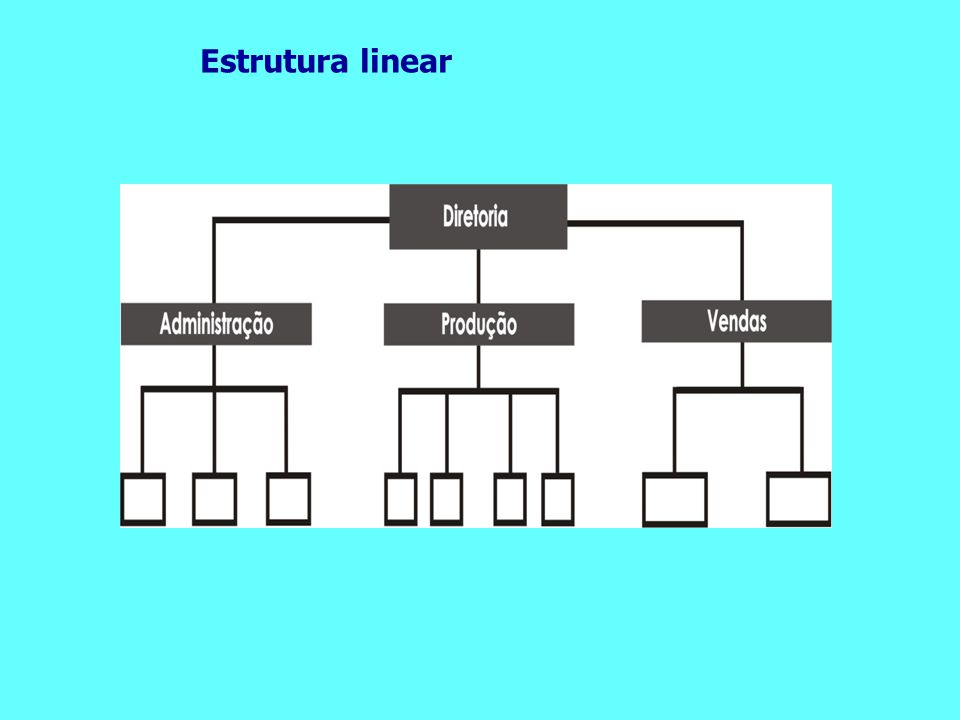 Estrutura linear