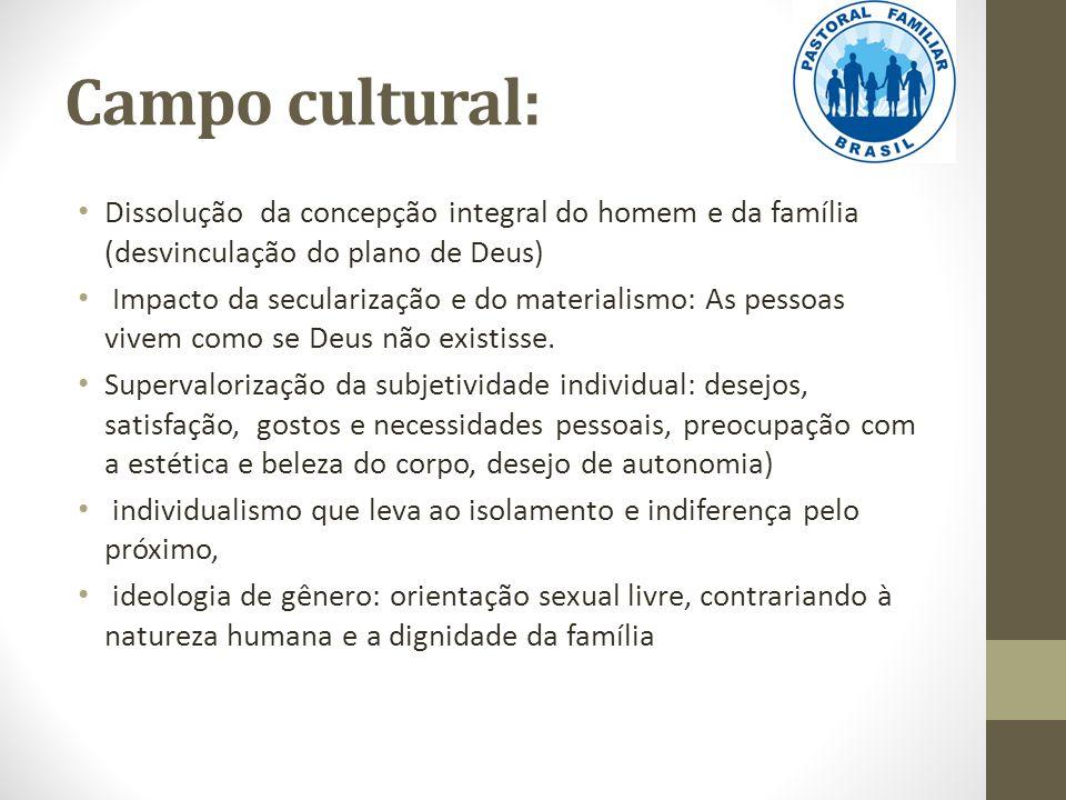 Campo cultural: Dissolução da concepção integral do homem e da família (desvinculação do plano de Deus)