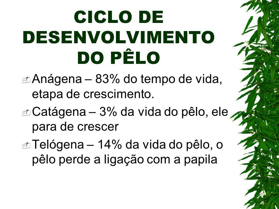 CICLO DE DESENVOLVIMENTO DO PÊLO