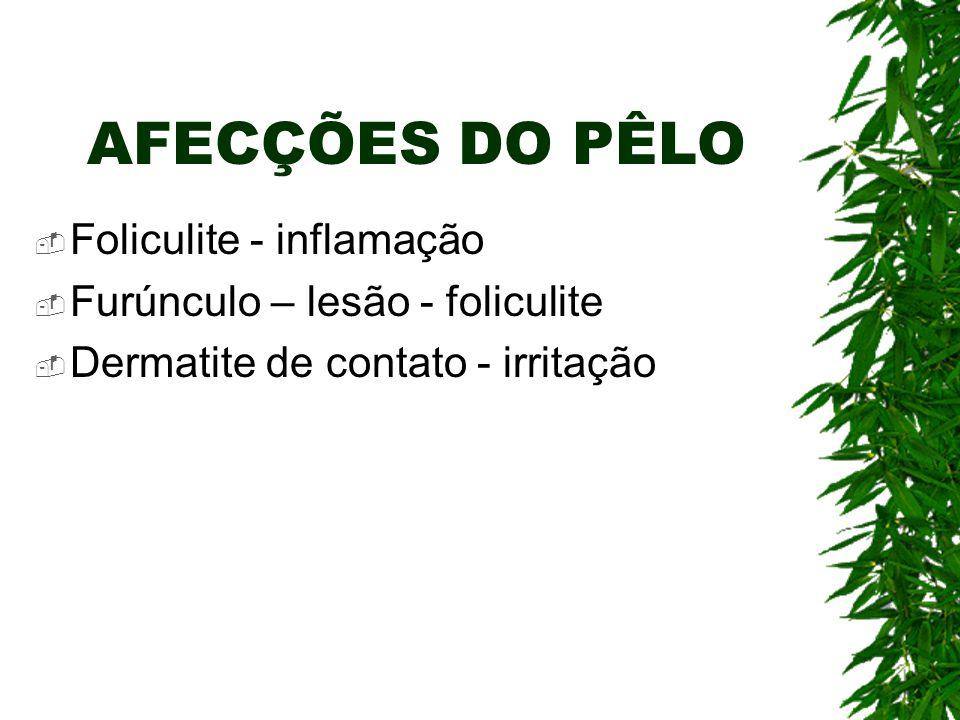 AFECÇÕES DO PÊLO Foliculite - inflamação
