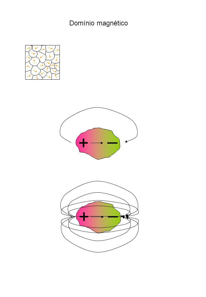 Domínio magnético + – + –