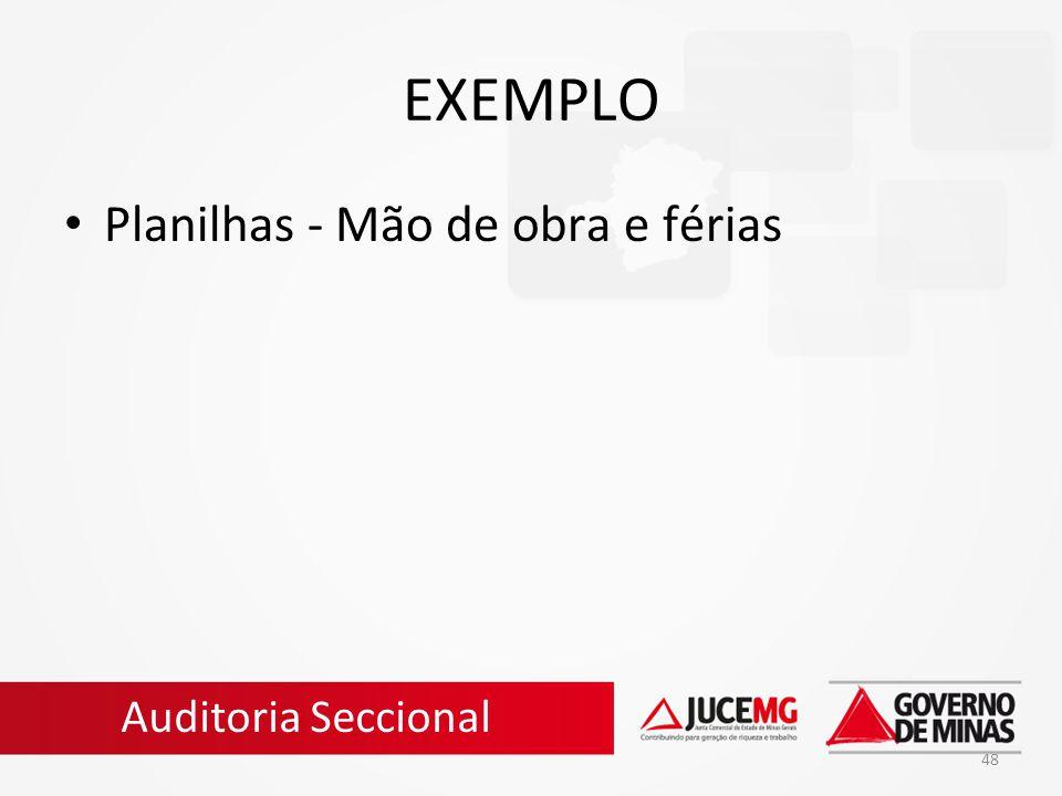 EXEMPLO Planilhas - Mão de obra e férias Auditoria Seccional