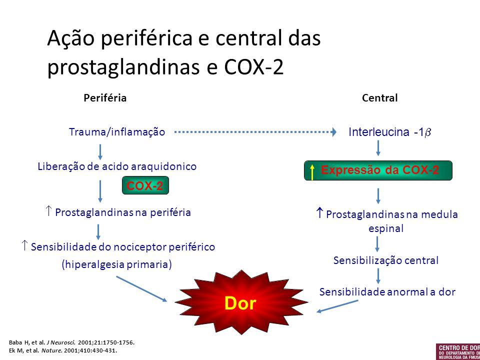 Ação periférica e central das prostaglandinas e COX-2