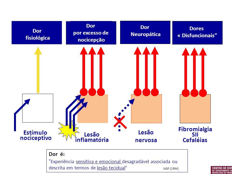 Lesão nervosa Fibromialgia SII Cefaléias Estímulo nociceptivo Lesão