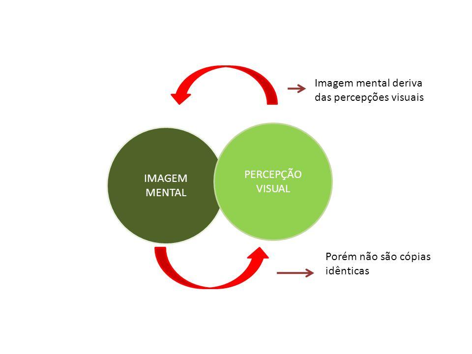Imagem mental deriva das percepções visuais