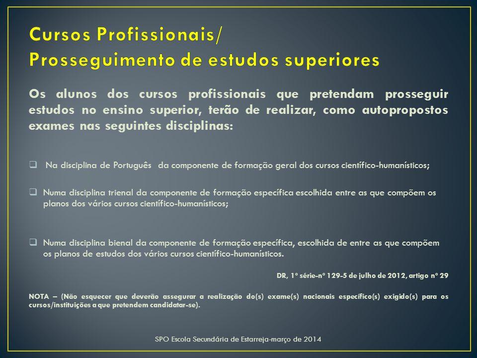 Cursos Profissionais/ Prosseguimento de estudos superiores