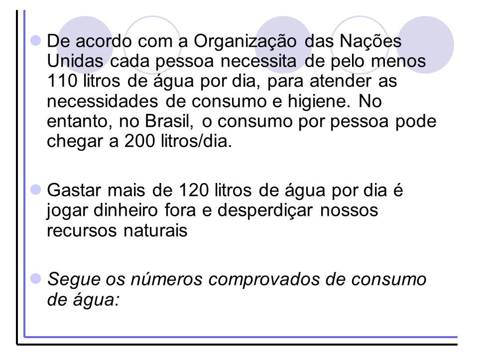 De acordo com a Organização das Nações Unidas cada pessoa necessita de pelo menos 110 litros de água por dia, para atender as necessidades de consumo e higiene. No entanto, no Brasil, o consumo por pessoa pode chegar a 200 litros/dia.