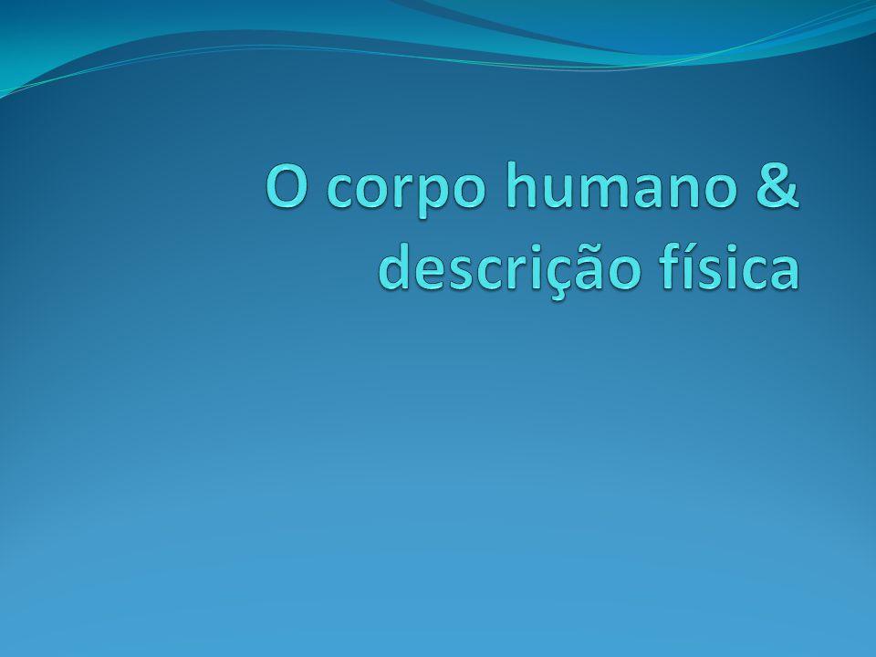 O corpo humano & descrição física