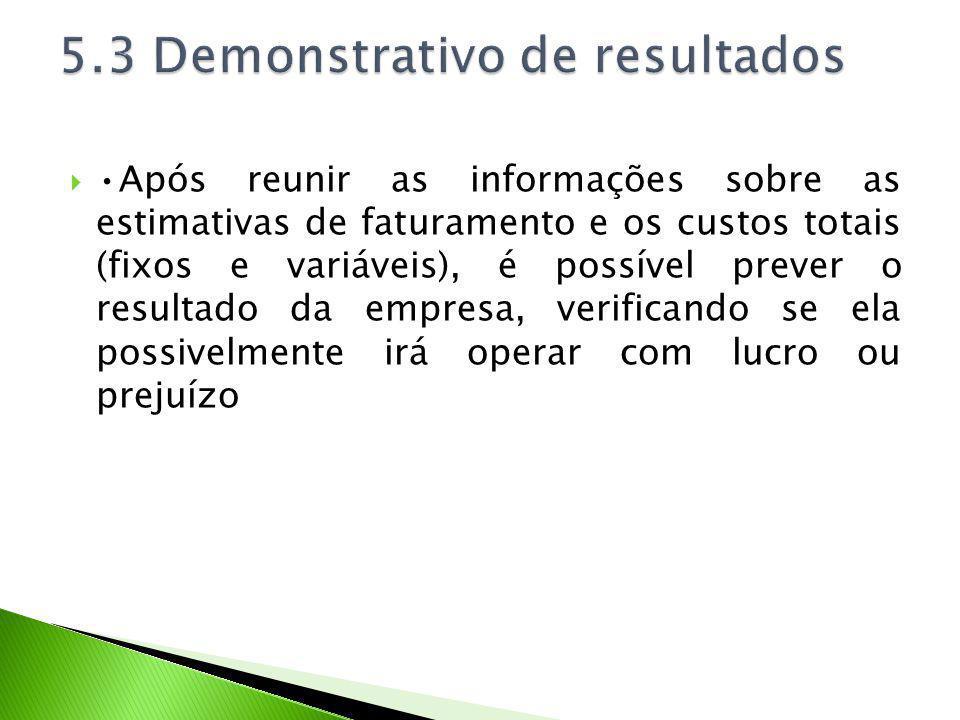 5.3 Demonstrativo de resultados