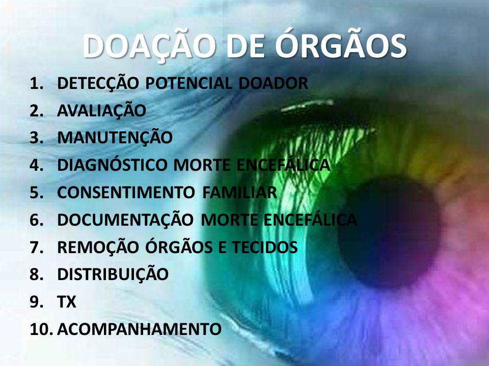 DOAÇÃO DE ÓRGÃOS DETECÇÃO POTENCIAL DOADOR AVALIAÇÃO MANUTENÇÃO