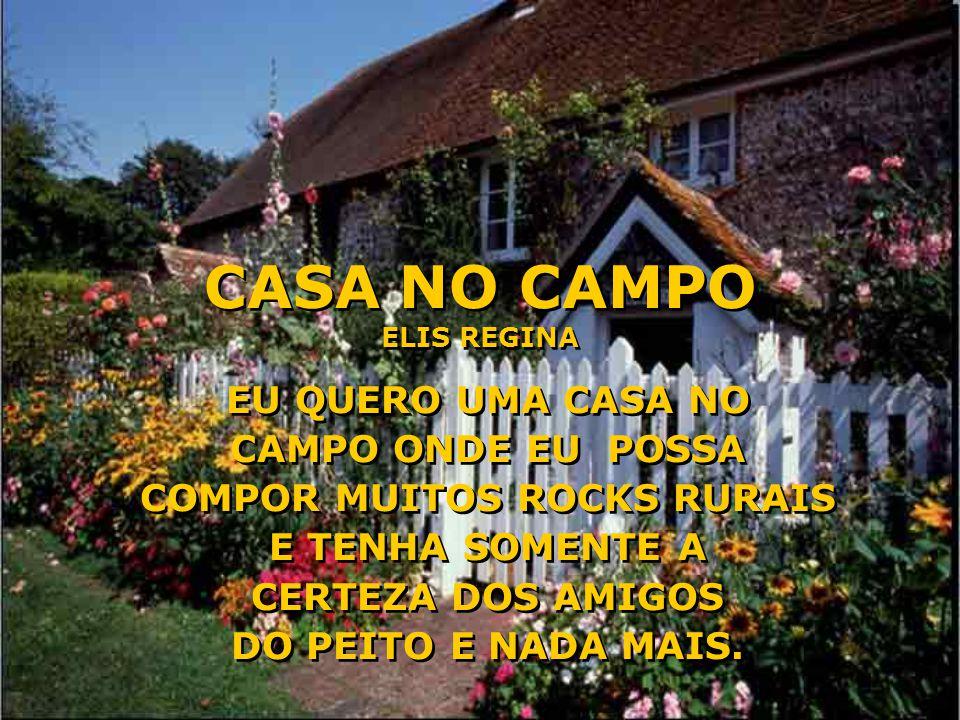 CASA NO CAMPO ELIS REGINA